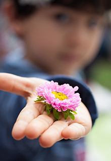 boy giving or receiving flower